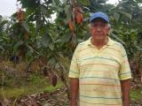 Sistemas de riego fortalecen la producción de cacao en Playa Seca